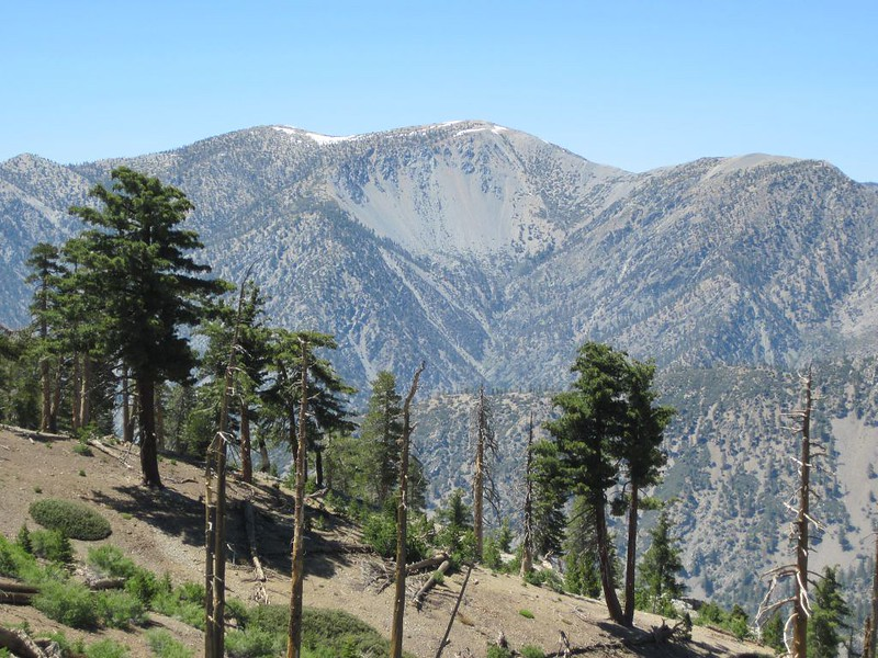 Zoomed-in view of Mount Baldy from the trail above camp