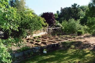 2007 Garden 035