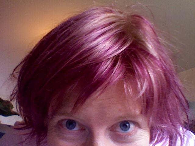 New Image Hair Design Drumcondra