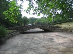 Lily Pond at Como Park - 2007