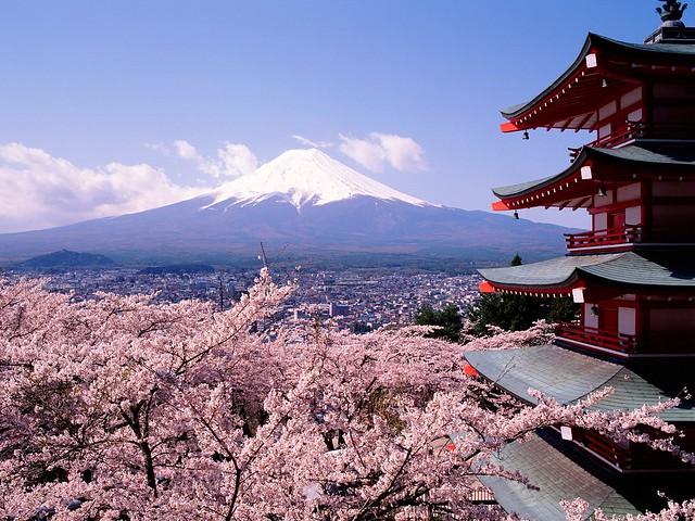 Une année sabbatique au Japon pour parler anglais et japonais
