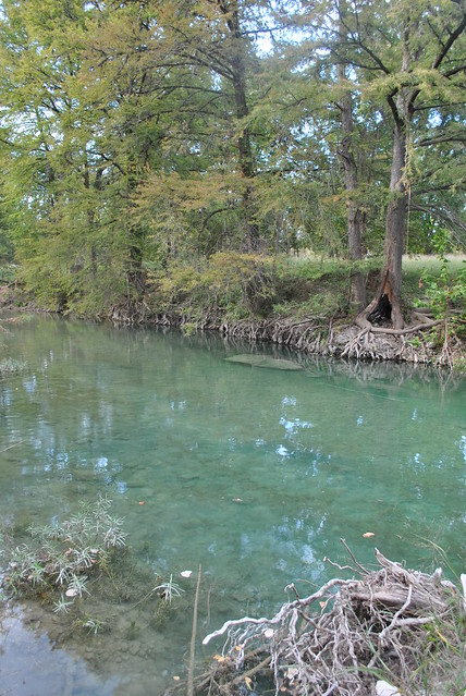 Flyfishing in texas 39 most beautiful locations where are for Fishing spots in dallas