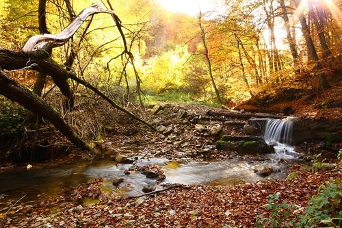 hungary 1020 magyarország baranya ősz színes óbánya