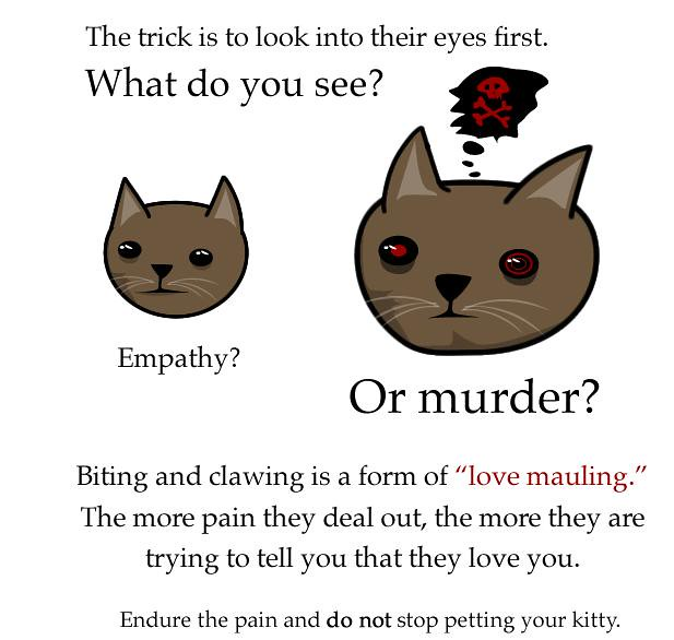 The Oatmeal How To Pet A Kitty Source Theoatmealcomcom Flickr