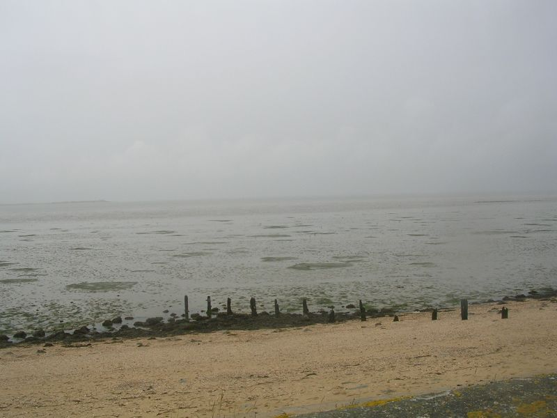 wet beach Faversham to Whitstable