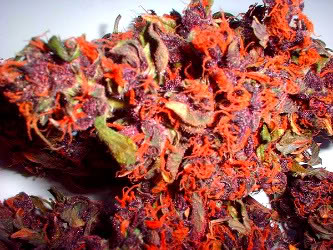 Fruity Pebble Kush
