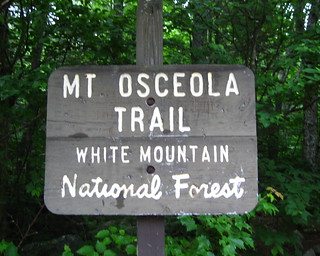 Mt. Osceola Hike
