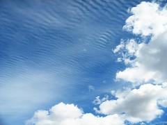 Striped Cirrocumulus Undulatus Clouds