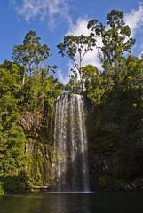 Millaa Millaa Waterfalls