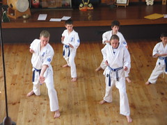 striking combat sports, individual sports, contact sport, taekwondo, sports, tang soo do, combat sport, martial arts, karate, taekkyeon, japanese martial arts, shorinji kempo,