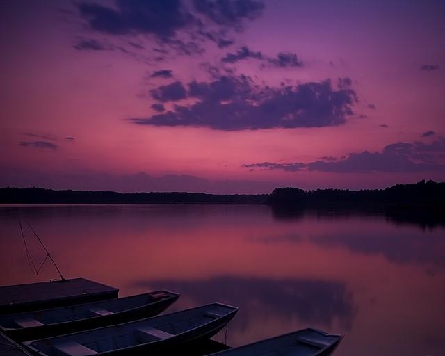 Magenta Sky