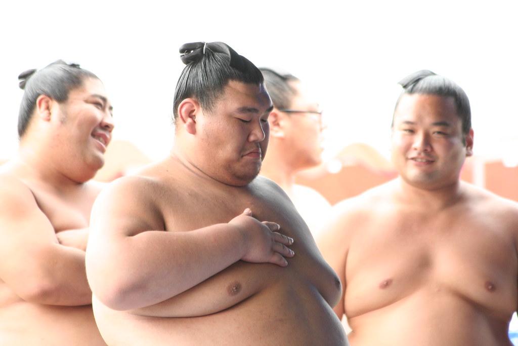 Для увеличения массы груди програма
