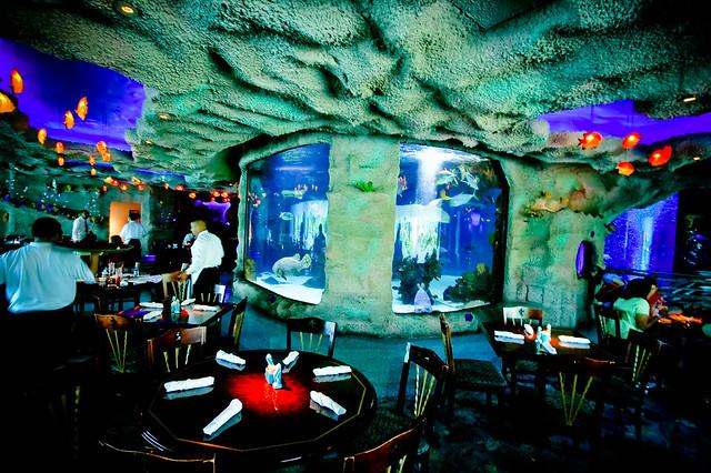 Downtown Aquarium Flickr Photo Sharing