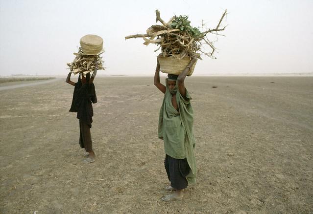 Wyschnięta rzeka w Mali