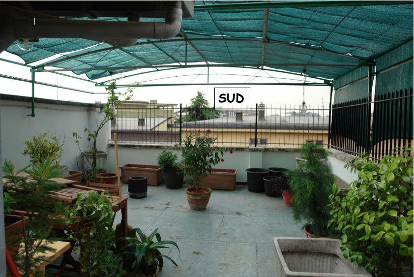 Progetto terrazzo esposto a sud milano for Arredo x terrazzi