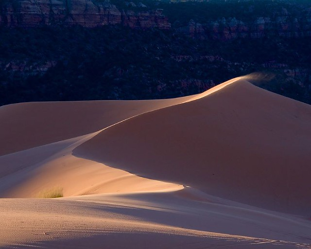 Coral Sand Dunes