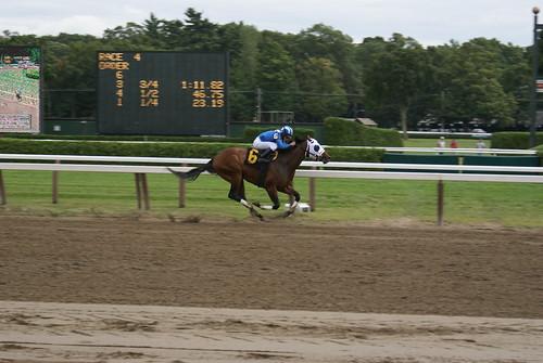 horses people ny newyork saratoga jockeys horseracing crowds winners bets racehorses nyra saratogaracecourse