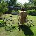 Chickens, Workbike, & Garden. by shanerh
