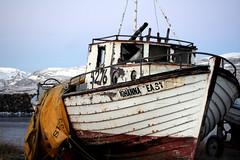 sailboat(0.0), ship(0.0), cog(0.0), caravel(0.0), tugboat(0.0), galleon(0.0), barque(0.0), vehicle(1.0), sea(1.0), watercraft(1.0), shipwreck(1.0), boat(1.0),