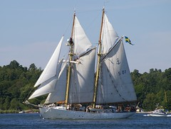 sail, sailboat, sailing ship, schooner, vehicle, sailing, ship, sea, training ship, mast, tall ship, watercraft, boat, brigantine,