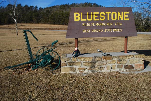 Bluestone Wildlife Management Area