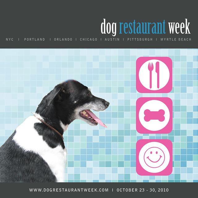 Dog Friendly Restaurant Quebec City