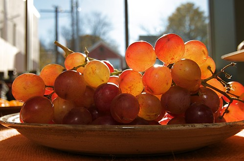 Backlit Grapes by nataraj_hauser / eyeDance