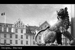 The Guard (bw version)