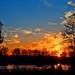Fall sunset 2149 by Orkakorak