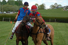 racing(0.0), eventing(0.0), trail riding(0.0), endurance riding(0.0), horse trainer(0.0), animal sports(1.0), equestrian sport(1.0), sports(1.0), polo(1.0), horse harness(1.0), jockey(1.0),