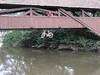 Fahrradfahren auf dem Fluss? by Steffen Knapp