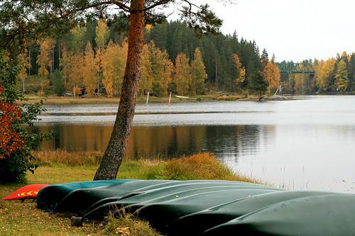 autumn lake nature landscape boats