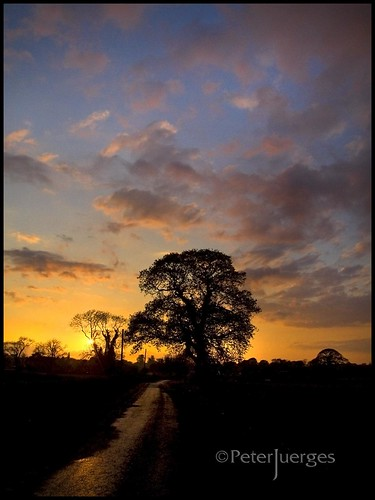 trees sunset clouds fuji cheshire silhouettes congleton s9600 superaplus aplusphoto thesuperbmasterpiece vanagram