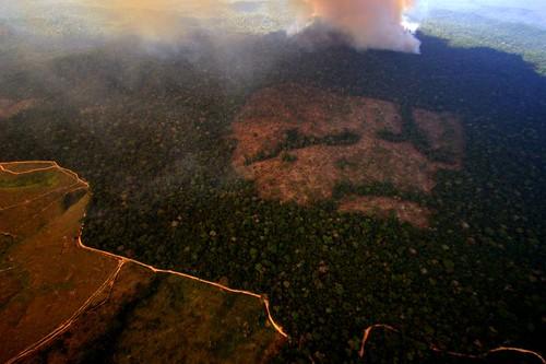 巴西帕拉州北部Novo Progresso附近一森林砍伐地區。(照片:Leonardo F. Freitas (LeoFFreitas))