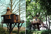 Fantásticas casas na árvore