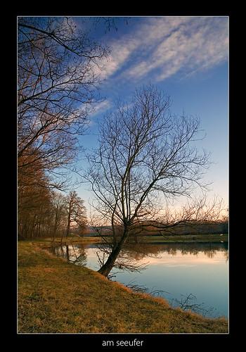 winter sunset lake tree styria