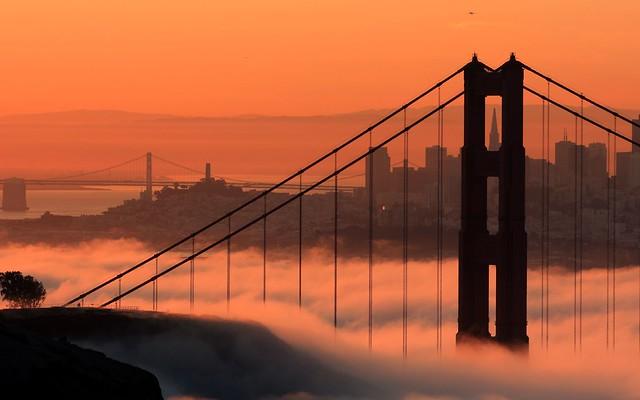 Iconic Fog