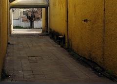 Beco Amarelo II IMG_3762