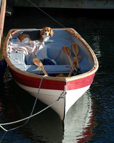 image_chinook_lake_union_boat_moorage