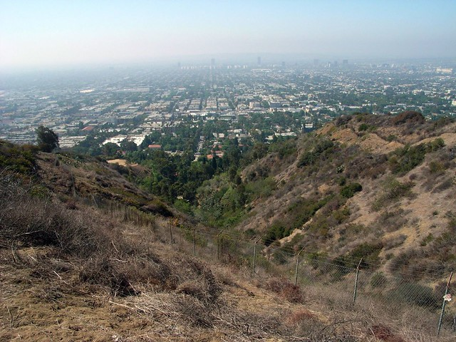 Runyon Canyon 008
