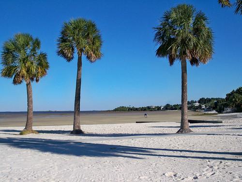gulfofmexico florida gulfcoast tidalflats pineislandstatepark