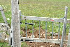 Electric fence on the GR