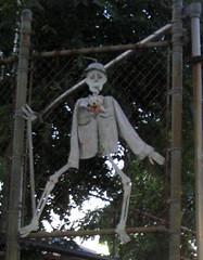 Coney Island skeleton