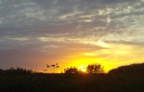 Against the setting sun...