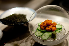 Urchin, 海膽