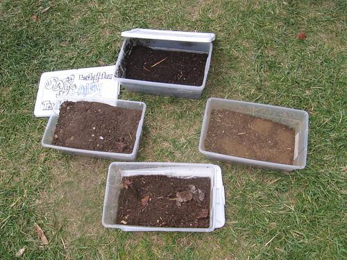 Summer soil exploration for Soil exploration