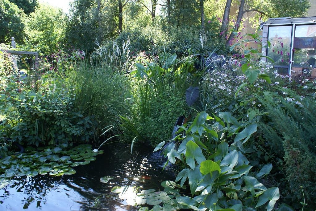 Make koi pond filter pond filter 20 sediment filter for Pond veggie filter