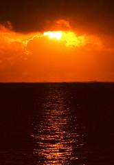 Mombasa Sunrise