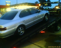 car died