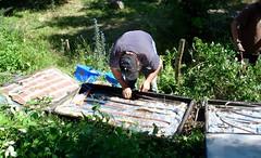 Solar panel construction and repair 2